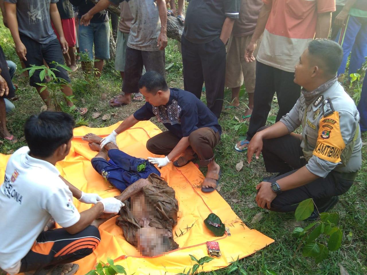 Polsek Gunung Agung Temukan Sesosok Mayat Lelaki di Kebun Karet