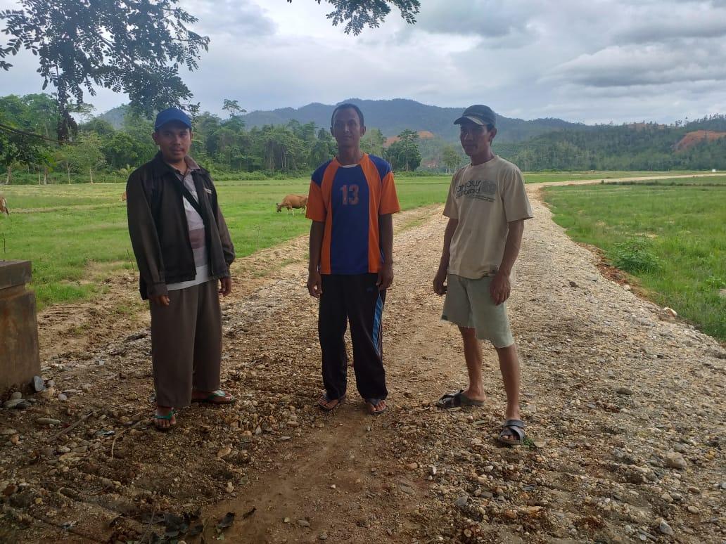 Pemanfaatan Dana Desa Wawohine, Bagun Infrastruktur Demi Perekonomian